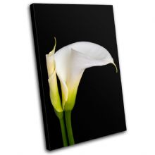 Calla Lily Flowers Floral - 13-1233(00B)-SG32-PO
